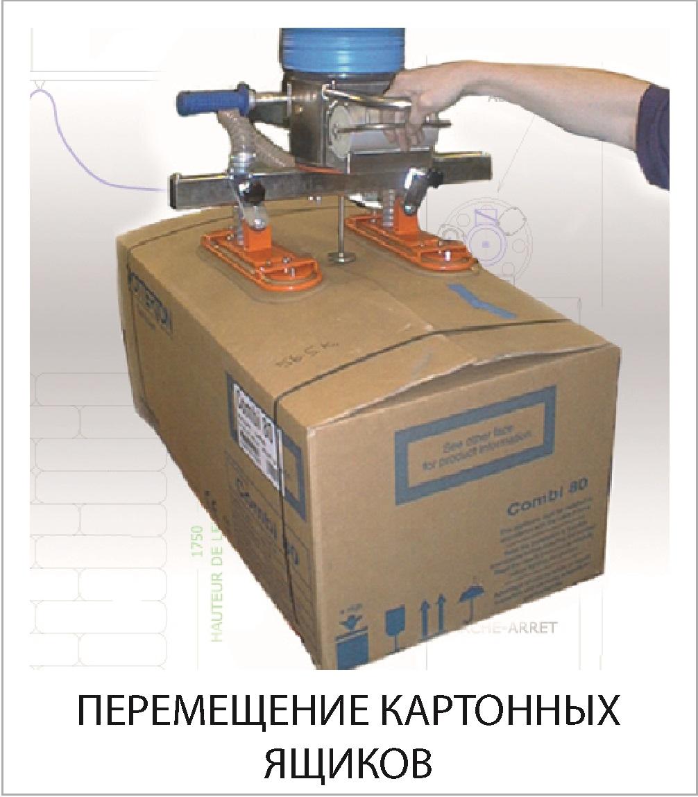 PEREMEShchENIE_KARTONNYH_YaShchIKOV.jpg